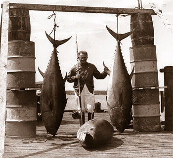 Historic bluefin tuna catch. Photo © Tom Greene