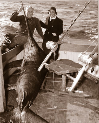 Historic swordfish catch. Photo © Tom Greene