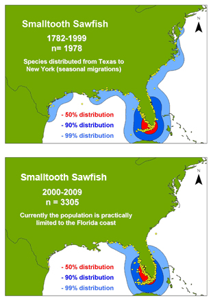 Smalltooth sawfish range map