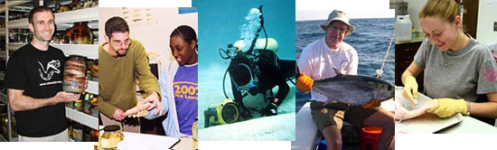 Careers in Ichthyology