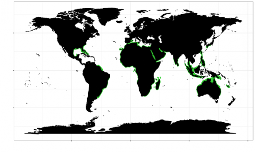 World distribution of the spinner shark. Map © Chondrichthyan Tree of Life