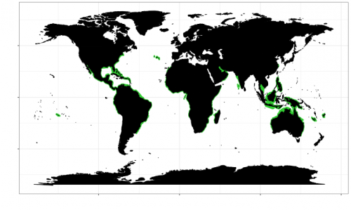 Geographic range of the bull shark. Map © Chondrichthyan Tree of Life