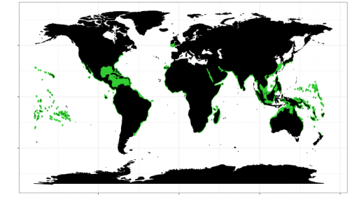 World distribution of the tiger shark. Map © Chondrichthyan Tree of Life
