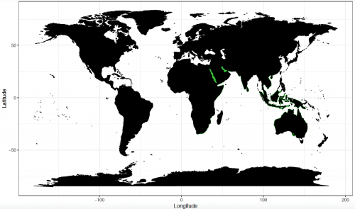 World distribution for the green sawfish. Map © Chondrichthyan Tree of Life