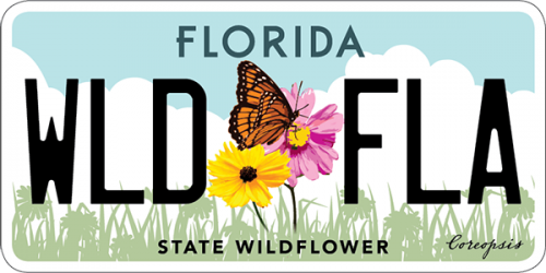 Florida wildflower vehicle license plate