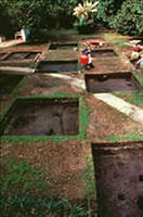 Excavations at the Ximenez-Fatio site.