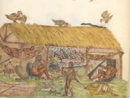 16th century image of a Caribbean native house. Plate 113, Histoire naturelle des Indes: The Drake Manuscript in the Pierpont Morgan Library