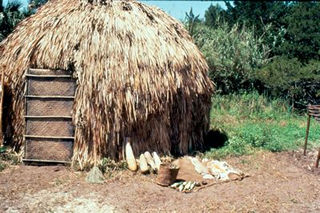 Reconstructed Timucua house