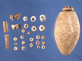 Shell beads, carved bone and teeth Timucuan ornaments