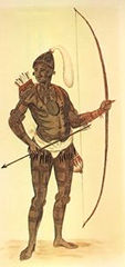 """""""A warrior of Florida"""" drawing by John White"""