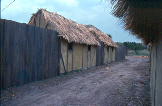 A reconstructed wattle and daub house
