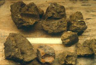 Fragments of a clay daub wall