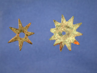 Flagellant stars