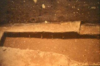 Coffin excavation photo