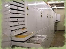 Museum storage cabinets