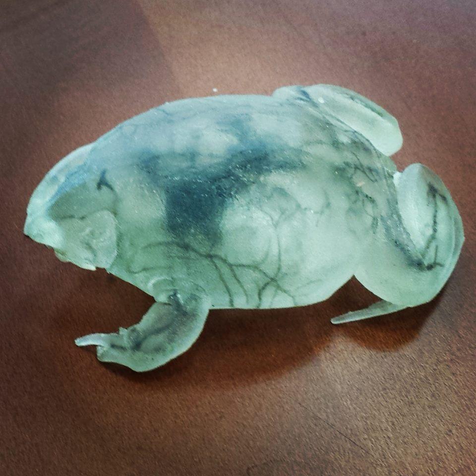 3-D printed frog
