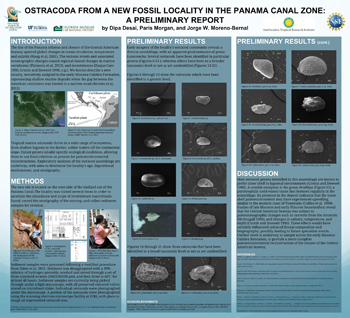 Ostracoda from a New Fossil Locality in the Panama Canal Zone: A Preliminary Report. Photo courtesy of Dipa Desai.