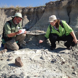 5th grade science teacher Joseph Boyle of Monroe Elementary School in Colorado and University of Florida Science Education Ph.D. student Lisa Lundgren examine a titanothere skeleton eroding out of the sediment. Photo by Cristina Robins.