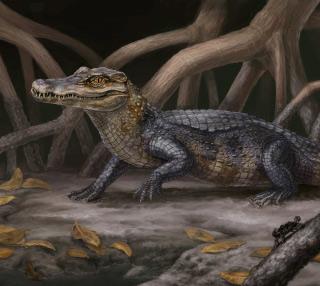 The most primitive caiman, Culebrasuchus mesoamericanus. © Artwork by Danielle Byerly.