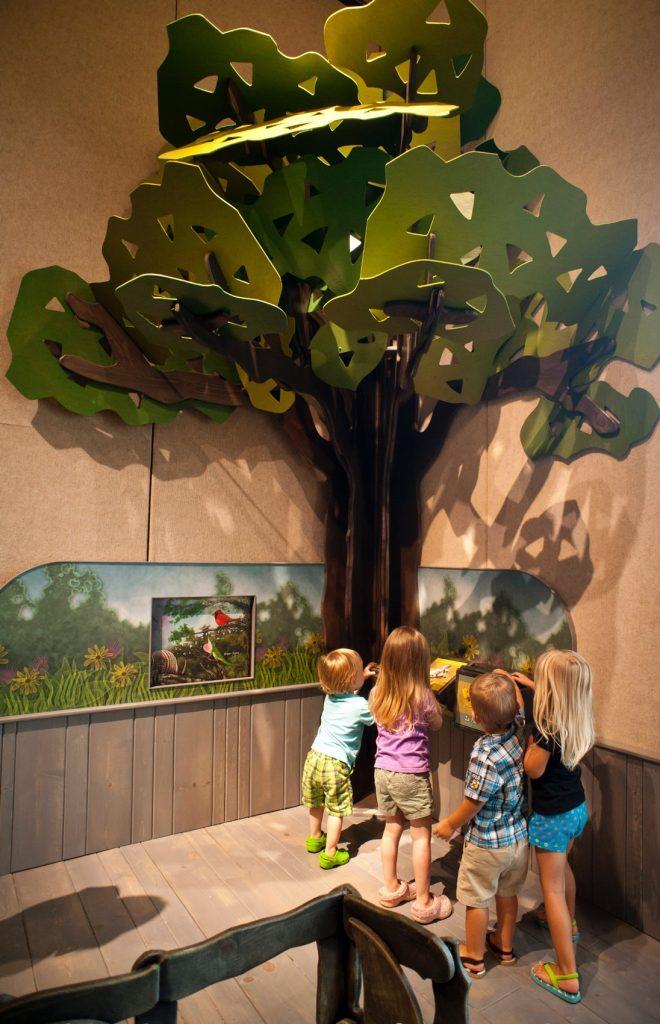 Tree habitat
