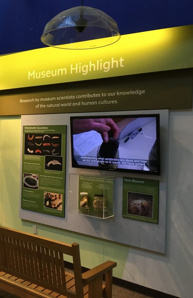 Museum highlight panel