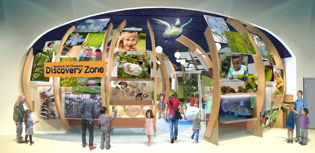 Discovery zone entry concept