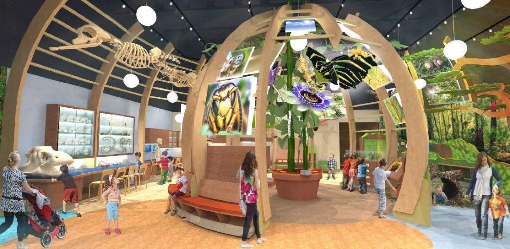 Discovery Zone interior concept