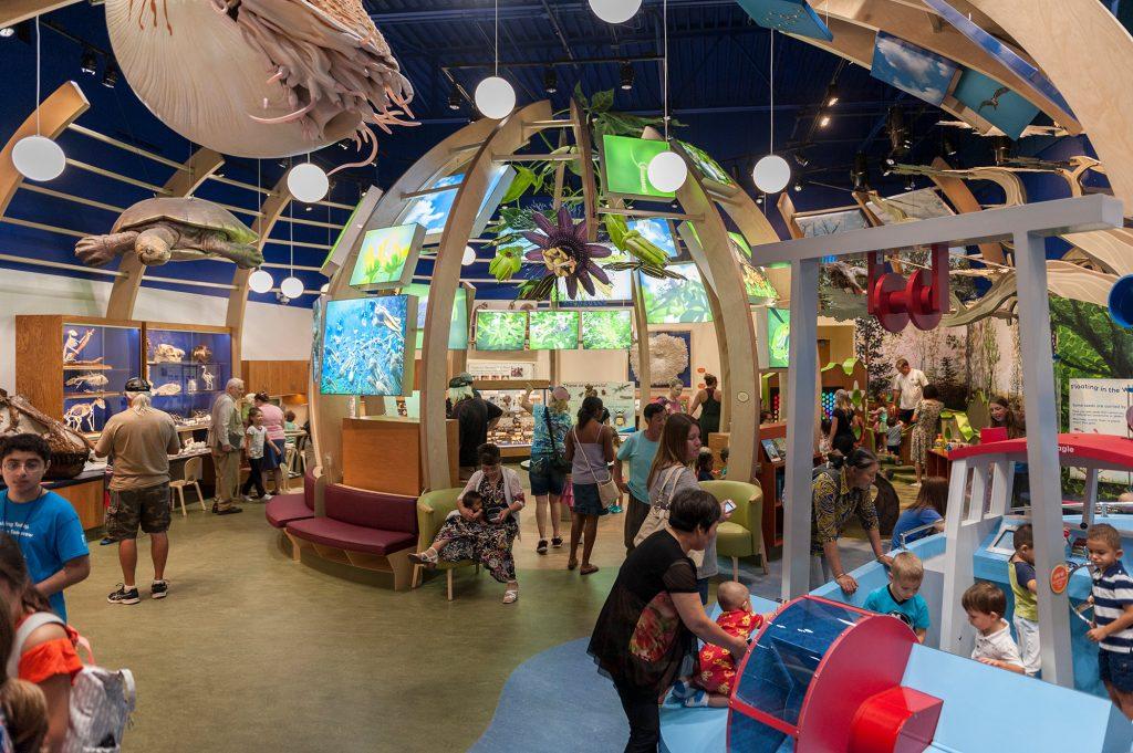 Discovery Zone interior