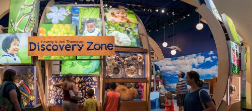 Discovery Zone  U2013 Exhibits