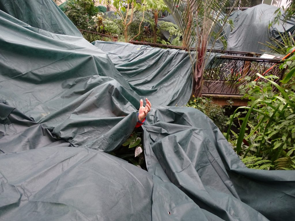 hand reaching out from tarps