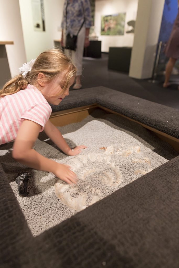 """Visitors will have the opportunity to step into the shoes of a paleontologist and sift through two interactive dig pits in the """"Permian Monsters: Life Before the Dinosaurs"""" exhibit, on display at the Florida Museum in Gainesville Sept. 29, 2018-May 5, 2019. ©Photo courtesy of Denis Smith"""