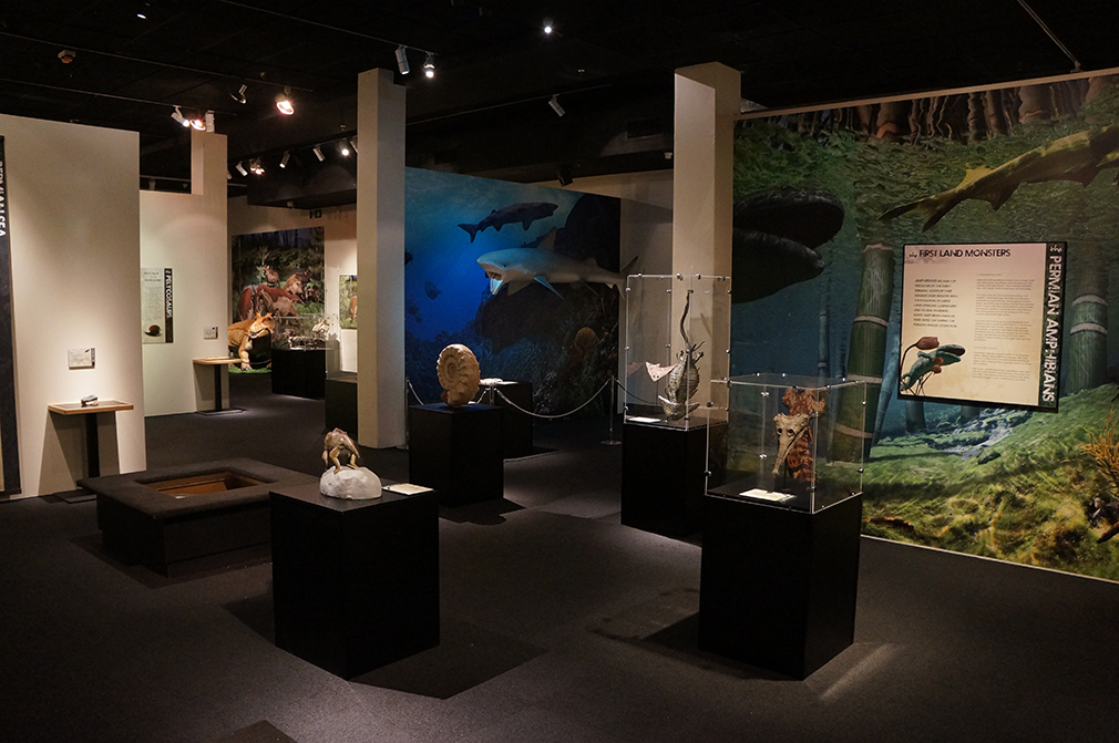 """During the Permian Period, all the continents were connected and surrounded by a superocean known as Panthalassa. Learn what underwater life was like in the """"Permian Monsters: Life Before the Dinosaurs"""" exhibit, on display at the Florida Museum in Gainesville Sept. 29, 2018-May 5, 2019. ©Photo courtesy of Gondwana Studios"""