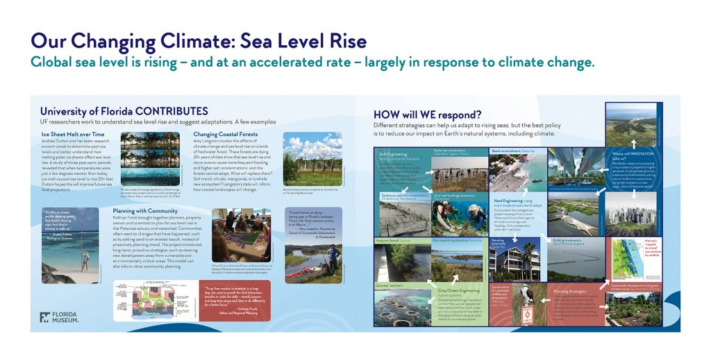 exhibit panel showing UF's contributions and response to sea level rise