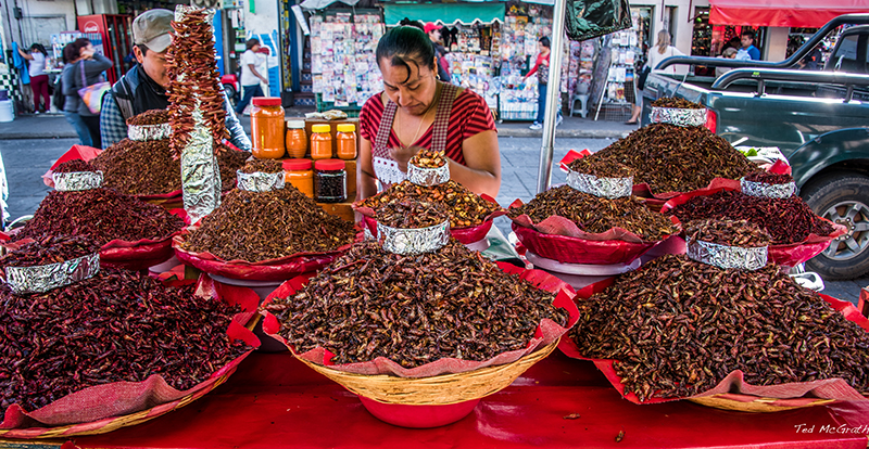 street vendor with fried chapulines