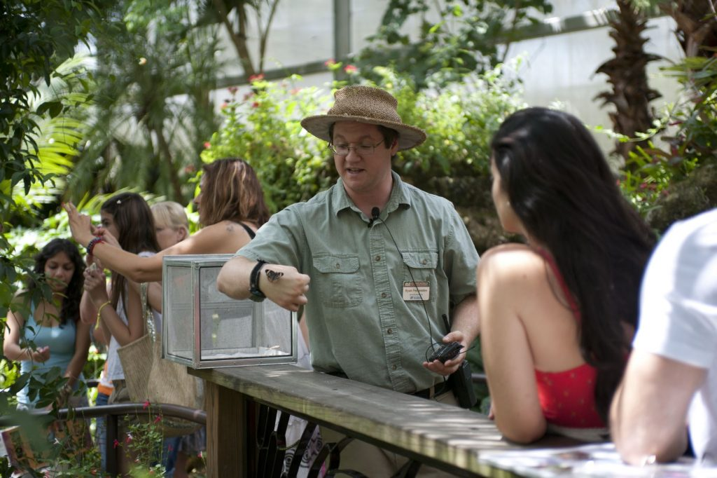 staff holds a butterfly while talking to visitors
