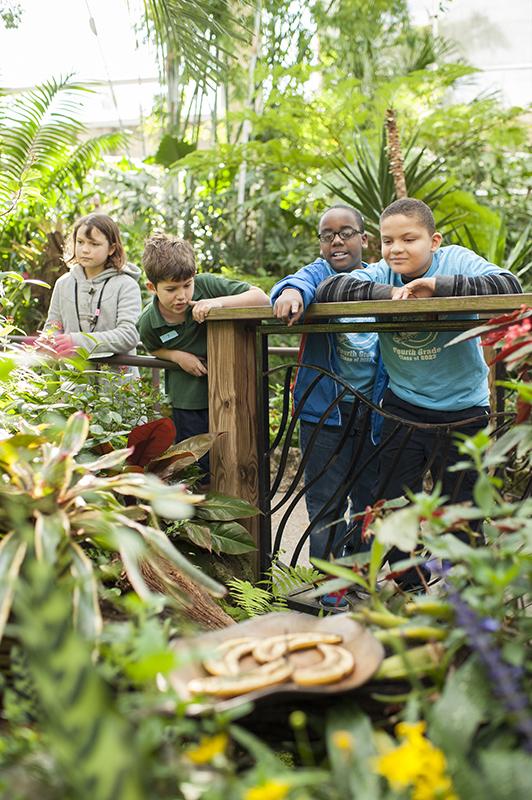 children in butterfly rainforest exhibit