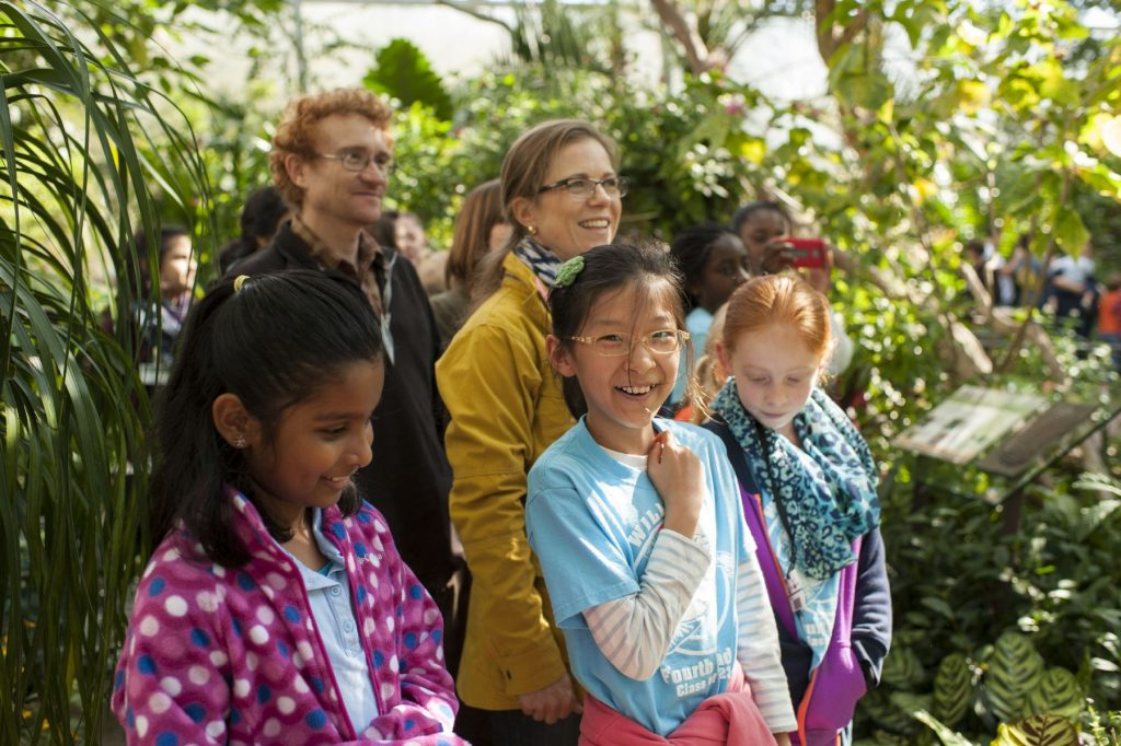 students and parents watch butterflies in the exhibit