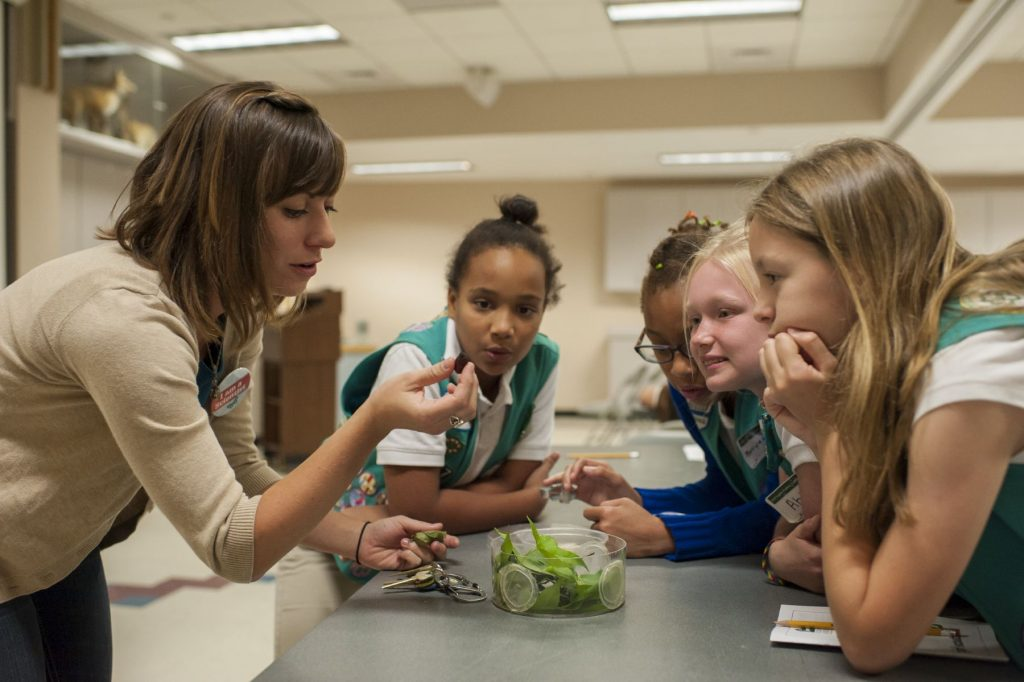 several girls look at butterfly chrysalis with a scientist