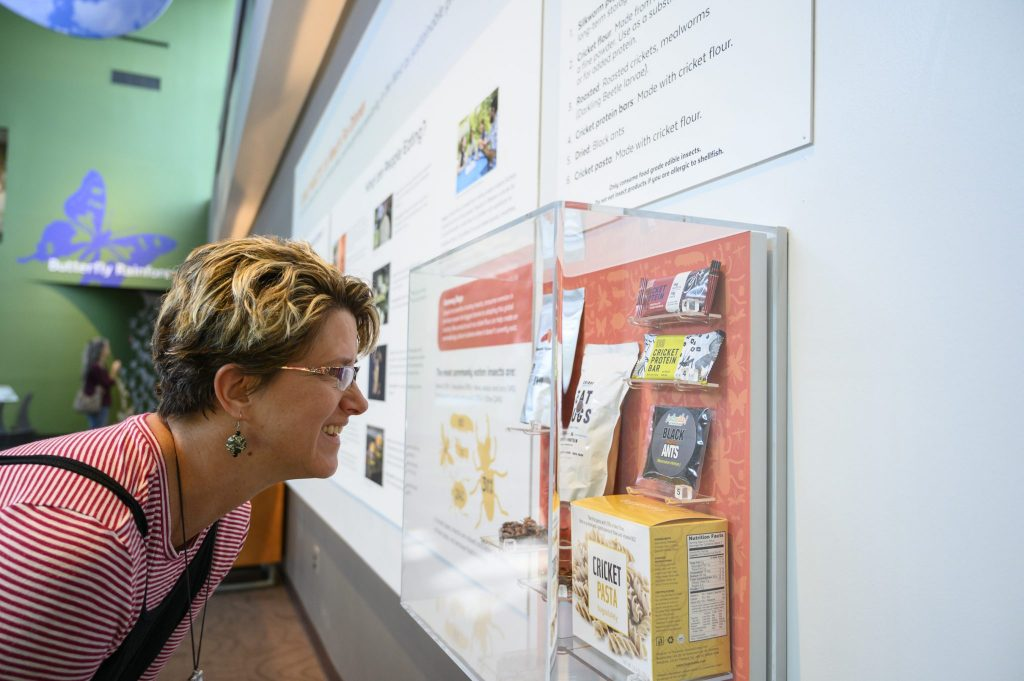 person looking at exhibit case