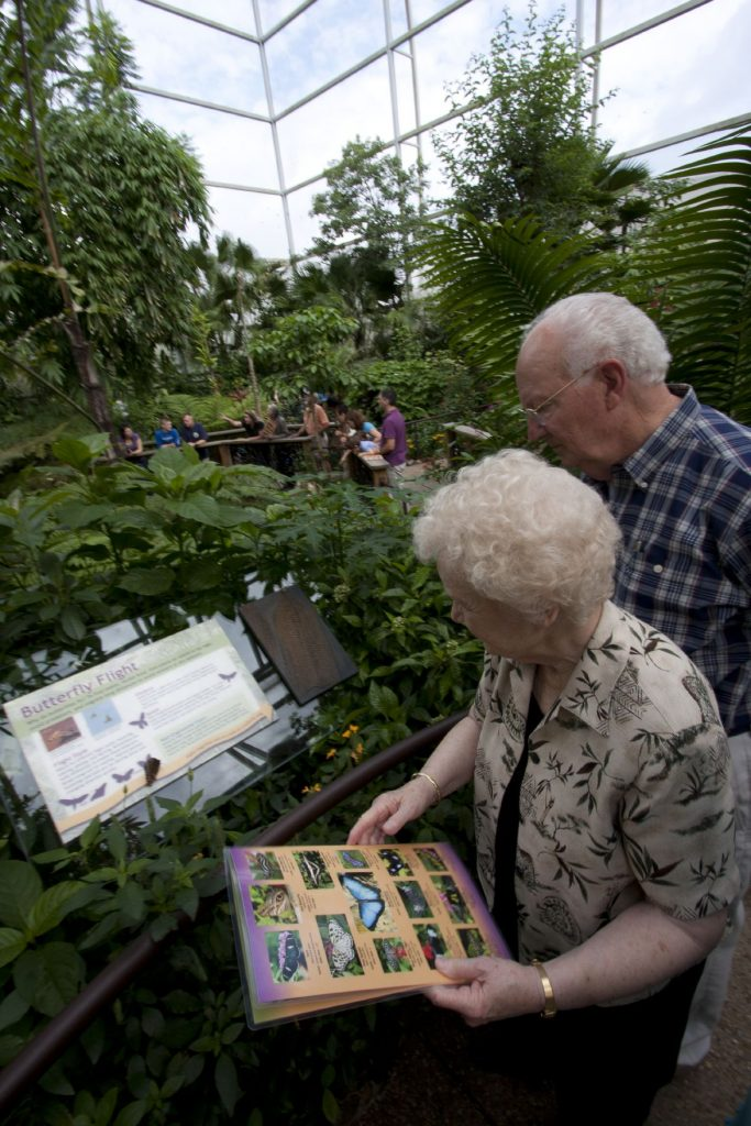 two adults look at signage in the exhibit