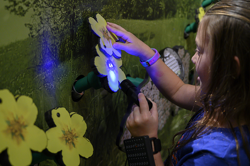 person interacting with flower in exhibit