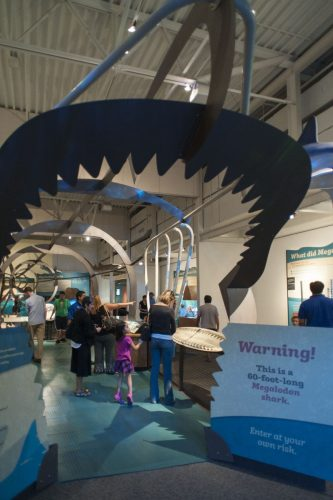 a large metal sculpture in the exhibit shaped like a very large shark
