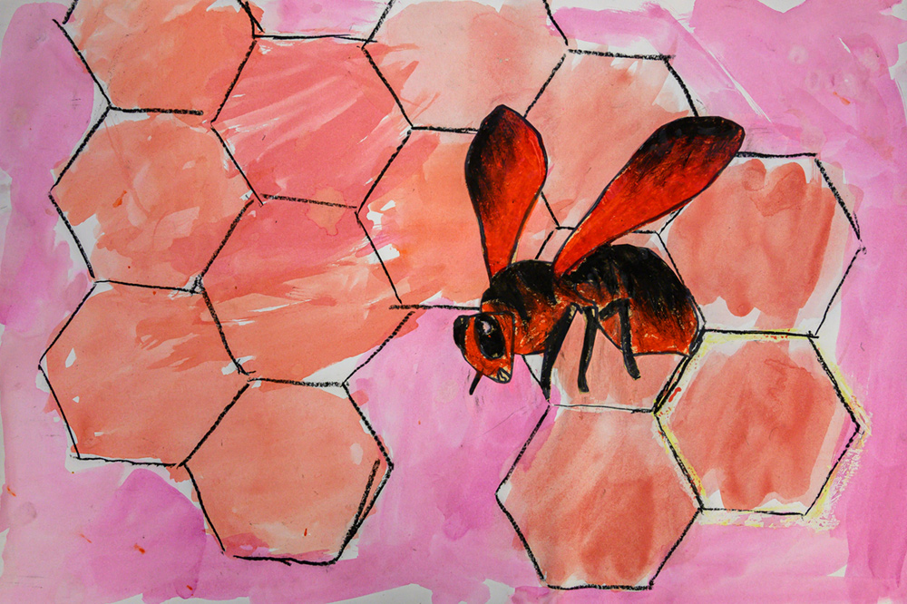 Painting of red and black wild bee on pink honeycomb.