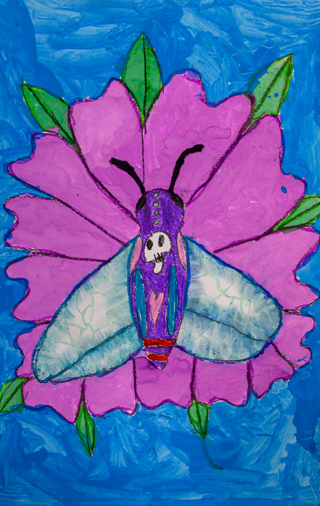 Painting of a colorful Humming Bird Moth with distinctive markings sitting on a pink flower.