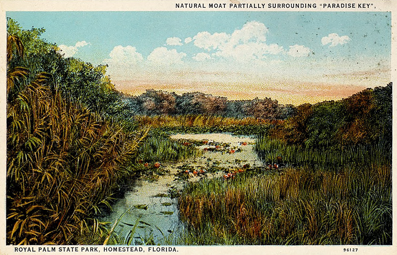 """Illustrated postcard of Royal Palm State Park, Homestead, Florida. Printed text on postcard reads, """"Natural moat partially surrounding """"Paradise Key""""."""