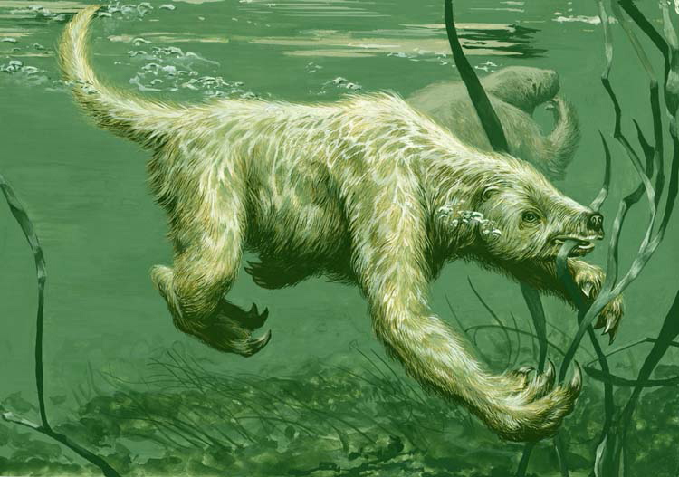 sloth-like animal swims under water and eats grass