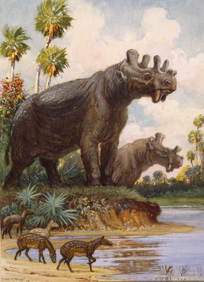 Painting of Uintatherium standing on the bank of a river