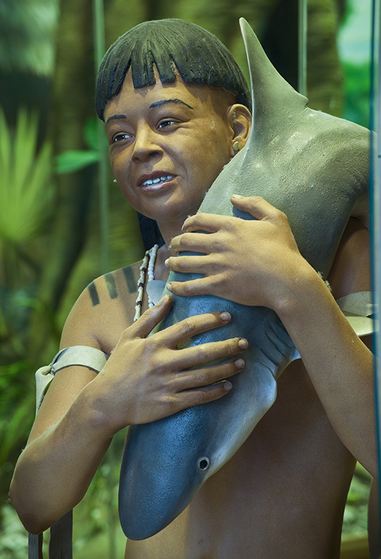 Diorama of a Calusa man carrying a small shark on his shoulder.