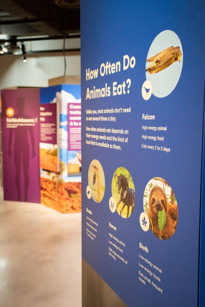 information panel in exhibit