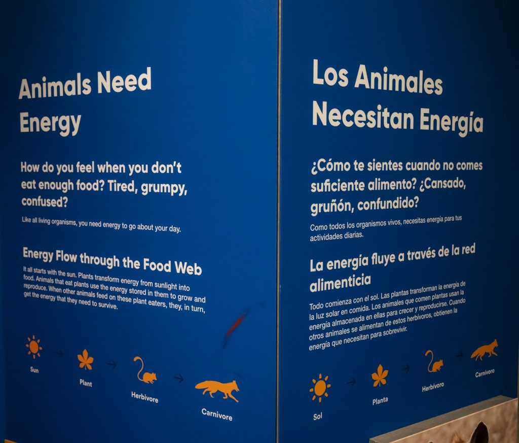 exhibit panels